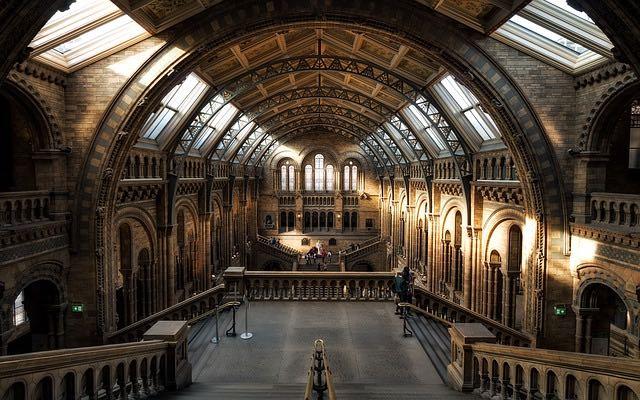 A la découverte de l'art et des musées